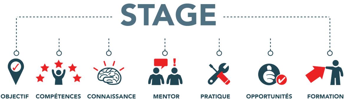 Steps of internship